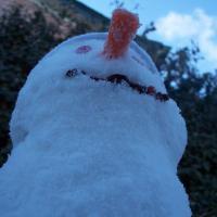snowedin's Photo